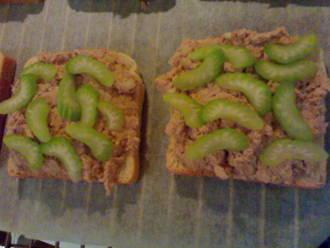 Billede af Tunfiske brød